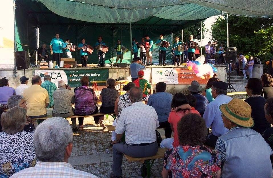 Atuação do Grupo de Concertinas Clave de Sol, de Pena Verde (foto Pedro Almeida).