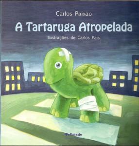 8. A Tartaruga Atropelada