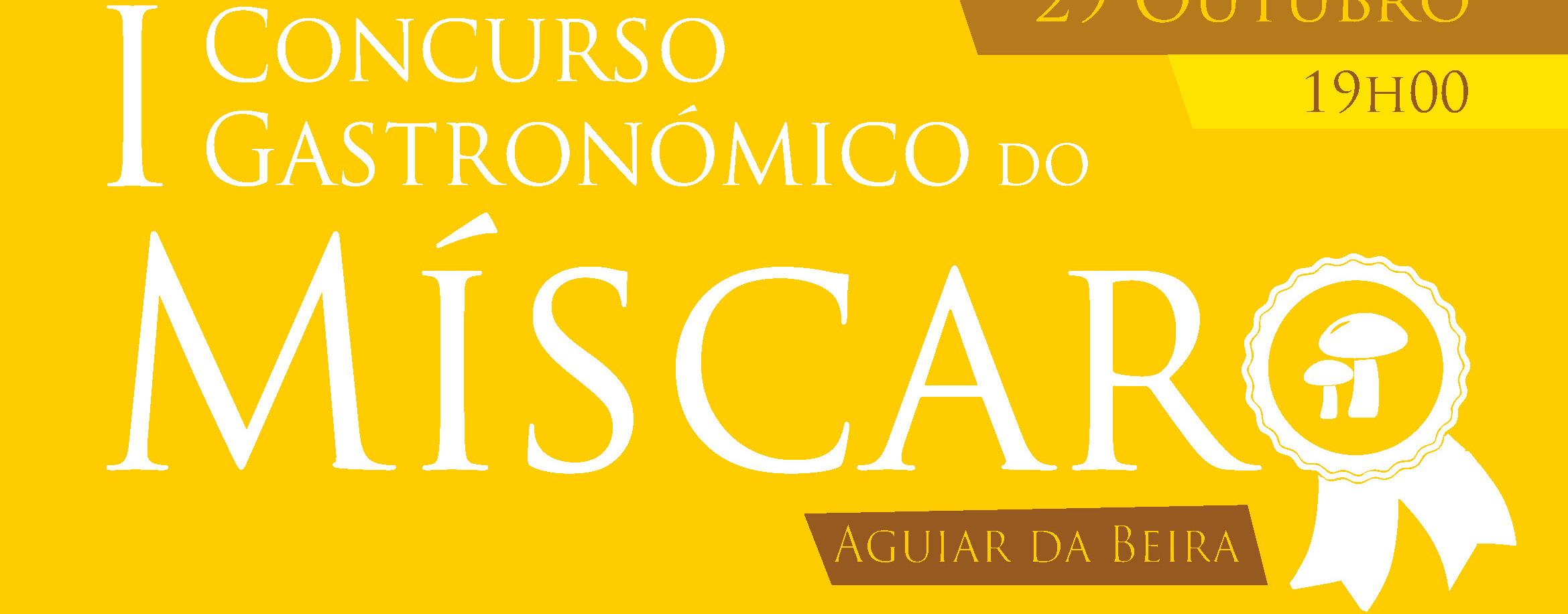 concurso-miscaro-2016-banner