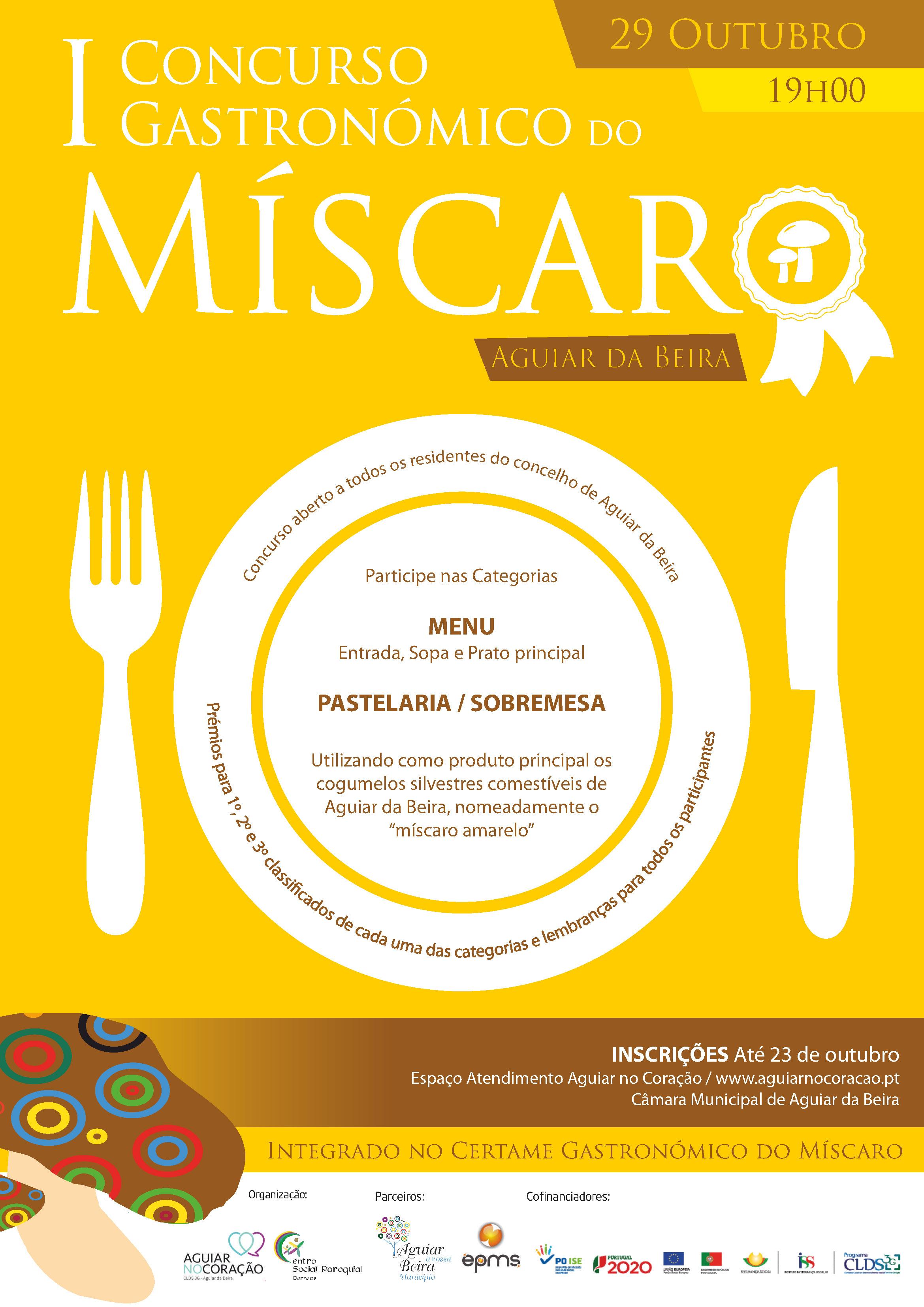 concurso-miscaro-2016_cartaz-pdf
