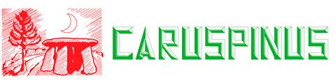 Caruspinus
